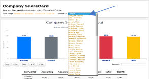 Company Report To, Company Reports To, Performance Scoring uses the reports to function, Report To fucntion of performance management application performance scoring